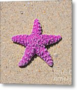 Sea Star - Pink Metal Print