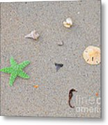 Sea Swag - Green Metal Print