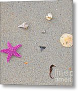 Sea Swag - Pink Metal Print