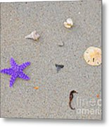 Sea Swag - Purple Metal Print