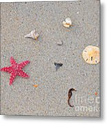 Sea Swag - Red Metal Print by Al Powell Photography USA