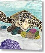 Sea Turtle Hello Metal Print