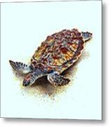 Sea Turtle II Metal Print