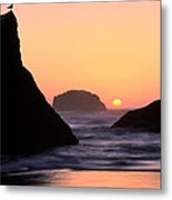 Seagull And Sunset Metal Print