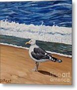 Seagull At The Seashore Metal Print