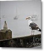 Seagull In Fog 1 Metal Print