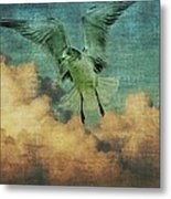 Seagull In The Clouds Metal Print