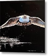Seagull In The Moonlight Metal Print