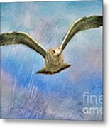 Seagull In The Storm Metal Print