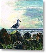 Seagull Lookout Metal Print