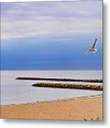 Seagulls And Sun Metal Print