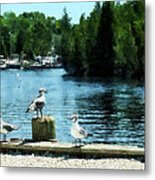 Seagulls On The Pier Metal Print
