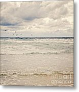 Seagulls Take Flight Over The Sea Metal Print