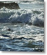 Seal Surfing Waves Metal Print