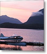 Seaplane And Cloud Metal Print