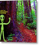 Searching For Friends Among The Redwoods Metal Print