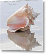 Seashell Be Still Metal Print