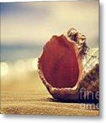 Seashell In The Sand  Metal Print by Jelena Jovanovic