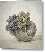 Seashell No.2 Metal Print