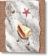 Seashell Pearls And Water Drops Collection Metal Print