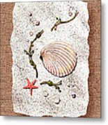 Seashell With Pearls Sea Star And Seaweed  Metal Print