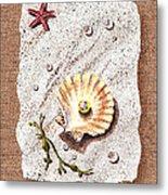 Seashell With The Pearl Sea Star And Seaweed  Metal Print