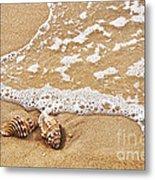Seashells And Lace Metal Print