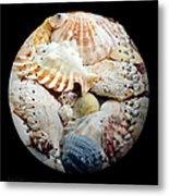 Seashells Baseball Square Metal Print