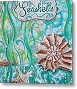Seashells II Metal Print