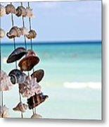 Seashells Metal Print by Sophie Vigneault