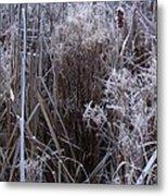 Seasonal Stand Of A Marsh Metal Print