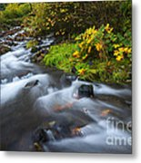 Seasons Change Metal Print