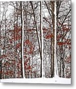 Seasons Converge Metal Print