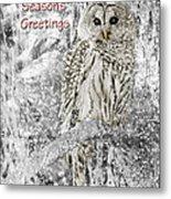 Season's Greetings Card Winter Barred Owl Metal Print