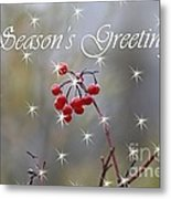 Seasons Greetings Red Berries Metal Print