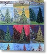 Seasons Of A Dawn Redwood - Sold Metal Print