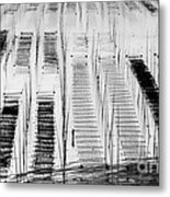 Seaweed Farm Metal Print