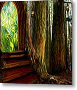 Secrets Of The Forest Metal Print