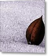 Seedling Metal Print