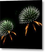 Seeds Metal Print by Lester Phipps
