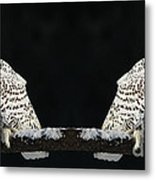 Seeing Double- Snowy Owl At Twilight Metal Print