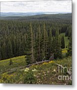 Seeing Forever - Yellowstone Metal Print