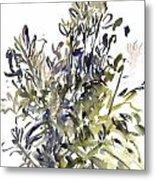 Senecio And Other Plants Metal Print
