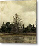 Seney Coffee With Cream Metal Print