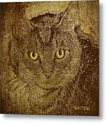 Sepia Cat Metal Print