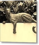 Sepia Cat Metal Print
