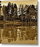 Sepia Reflection Metal Print
