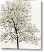 Sepia Square Tree Metal Print