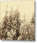 Sepia Winter Landscape Metal Print