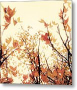 September Song Metal Print